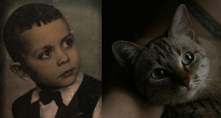 """фото """"Кастинг на мюзикл """"Cats"""""""" метки: ,"""