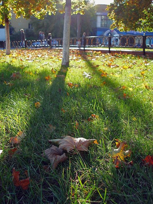 """фото """"Осень в городе"""" метки: пейзаж, город, осень"""