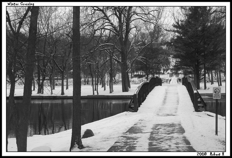 "photo ""Winter Crossing"" tags: landscape, black&white, winter"