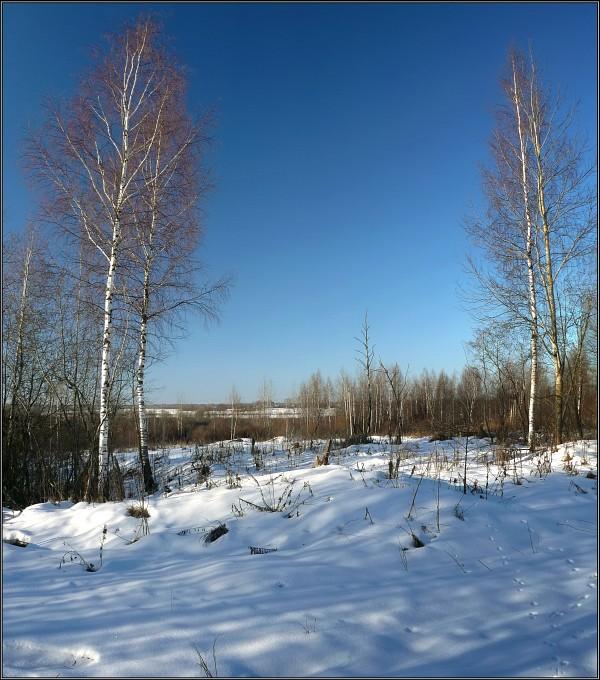 "photo ""January symmetry"" tags: landscape, winter"