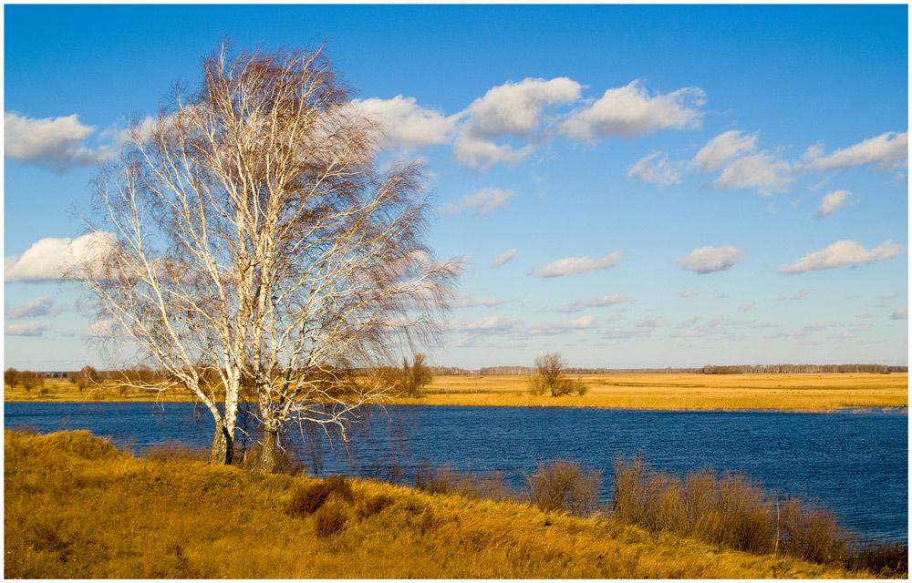 """фото """"На пригорке у синей воды"""" метки: пейзаж, осень"""