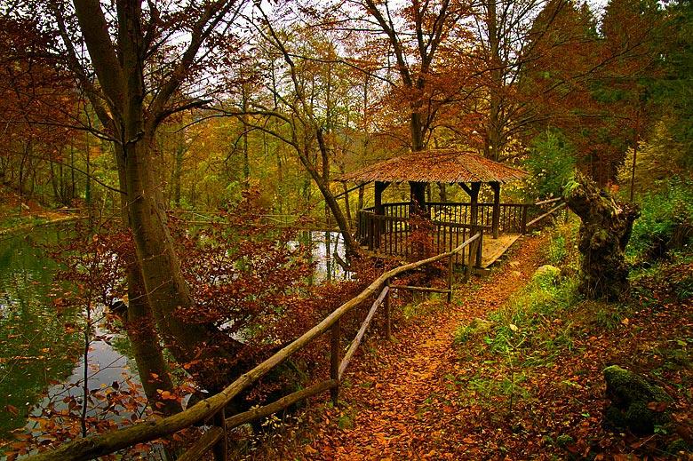 """фото """"Along the lake"""" метки: пейзаж, осень"""