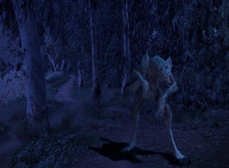 "photo ""Werwolf"" tags: landscape, nature, night, wild animals"