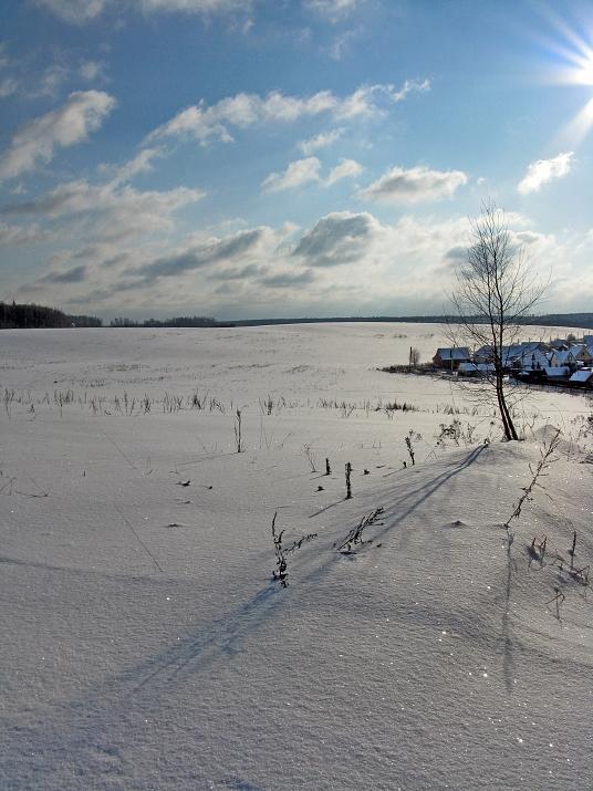 """фото """"Вот и у нас снег, и у нас зима..."""" метки: пейзаж, зима"""