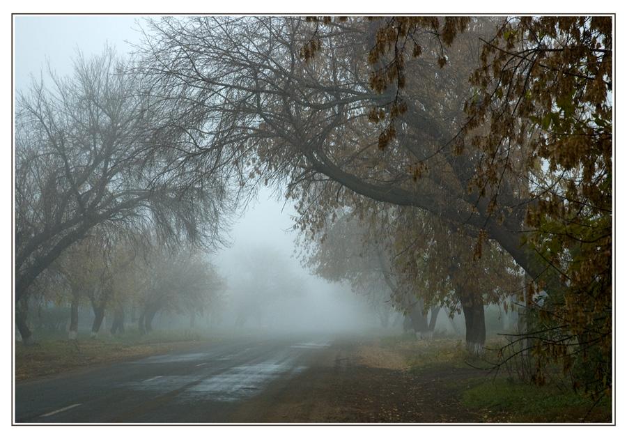 """фото """"Арка"""" метки: город, пейзаж, осень"""