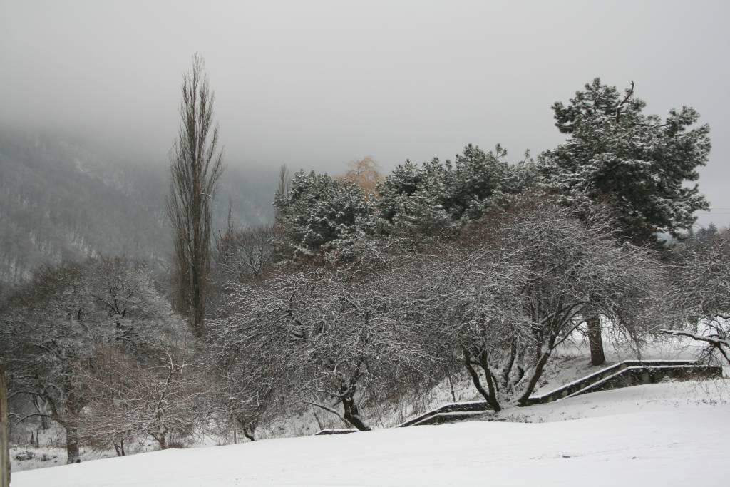 """фото """"Туман"""" метки: пейзаж, зима"""