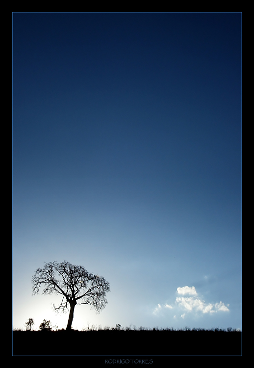 "photo ""simplicity"" tags: ,"