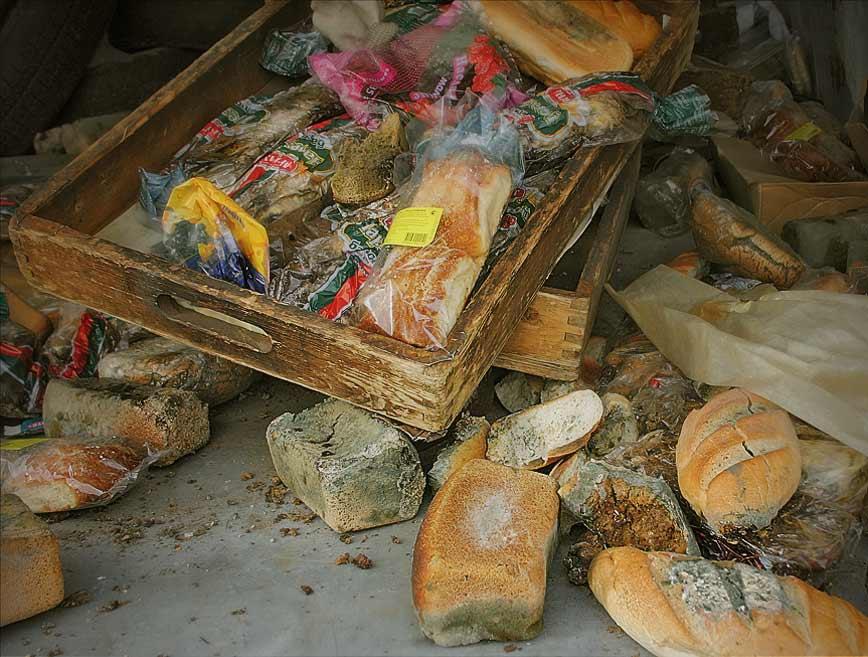 "photo ""Bread"" tags: still life,"