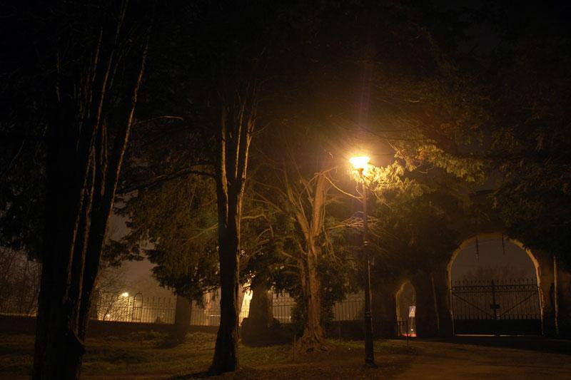 "фото ""Evening in the park"" метки: пейзаж, ночь"