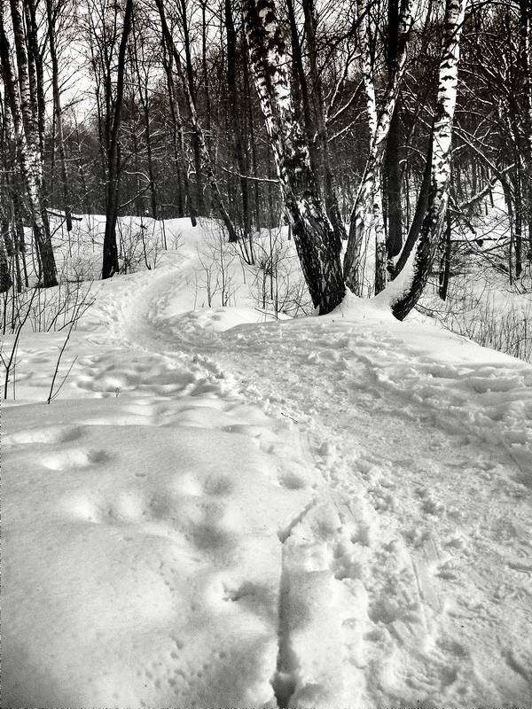 "photo ""***"" tags: landscape, black&white, winter"