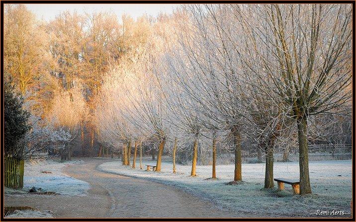 """фото """"*** S ***"""" метки: пейзаж, зима"""