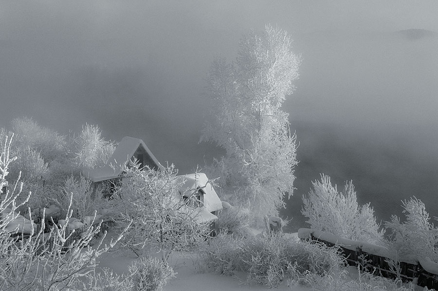 "photo ""***"" tags: black&white, landscape, winter"