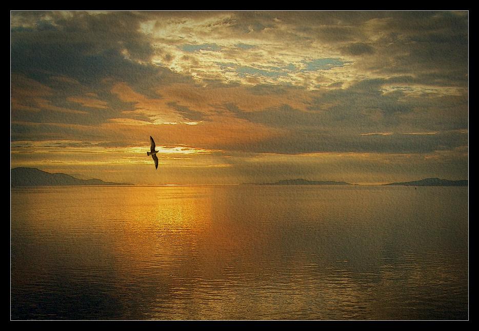"""фото """"Золото Норвегии"""" метки: пейзаж, вода, закат"""