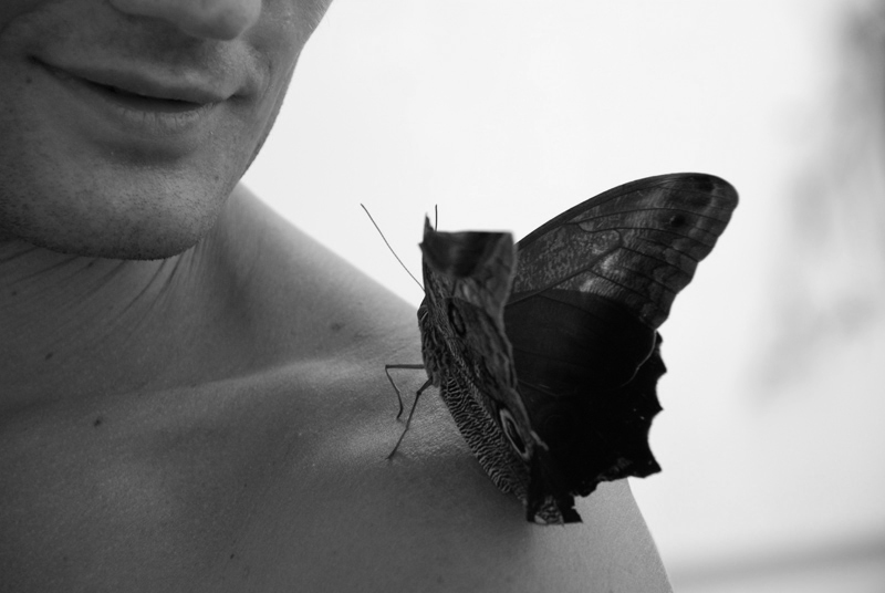 "photo ""conversation with the butterfly"" tags: black&white,"
