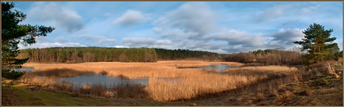 "photo ""February on the wetland..."" tags: landscape,"