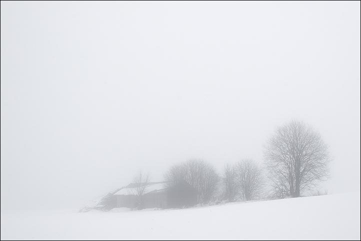 "photo ""Fog"" tags: ,"