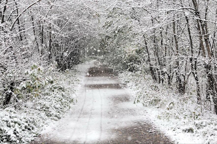 "photo ""Sleet snow"" tags: landscape, winter"
