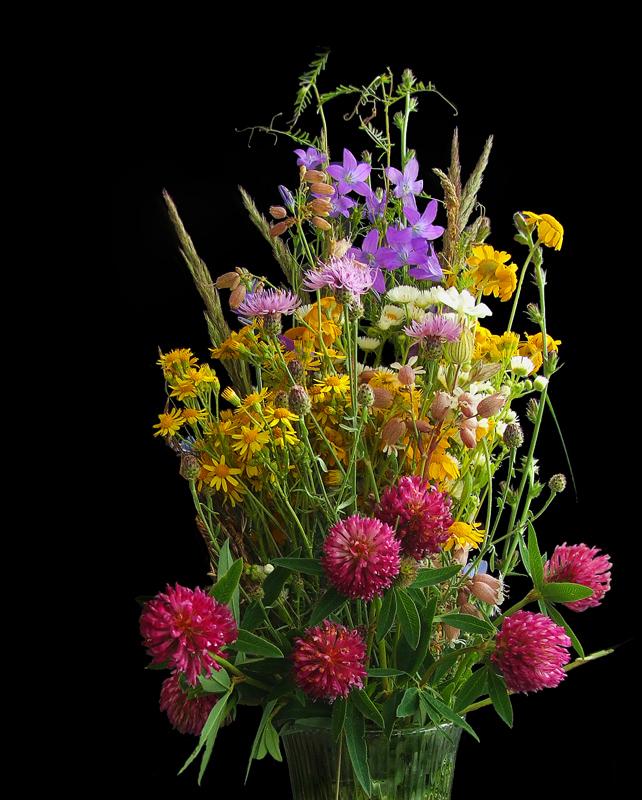"""фото """"Веник"""" метки: природа, макро и крупный план, цветы"""