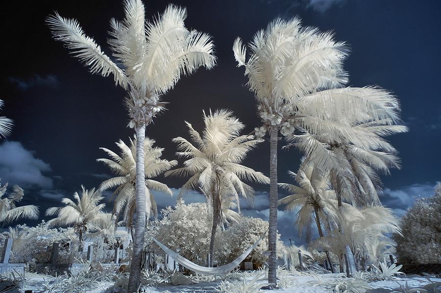 "photo ""Winter in Mexico"" tags: landscape, travel, North America"