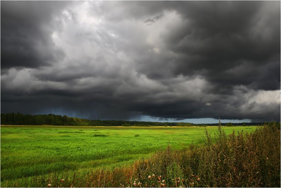 """фото """"Небо  и земля"""" метки: пейзаж, лето, облака"""