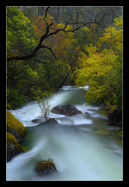 """photo """"Secret Paradise"""" tags: landscape, forest, water"""