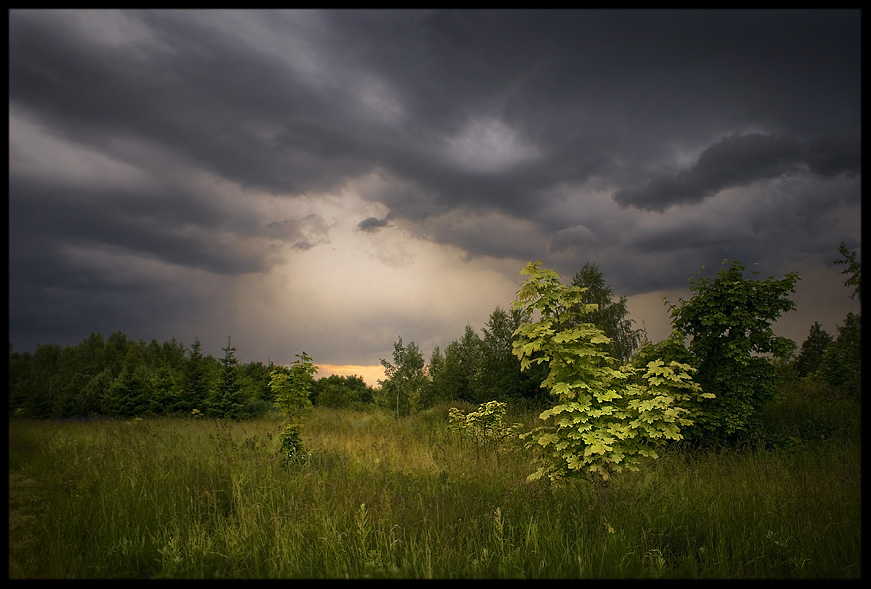 """photo """"Before the rain"""" tags: landscape, summer, sunset"""