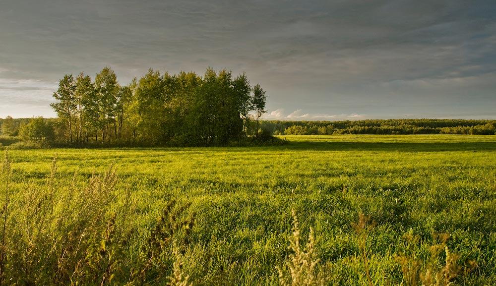 """фото """"После грозы"""" метки: пейзаж, лето"""