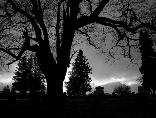 "photo ""Silhouettes"" tags: misc.,"
