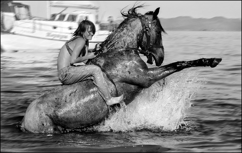 "photo ""Horse bathing"" tags: nature, genre, pets/farm animals"