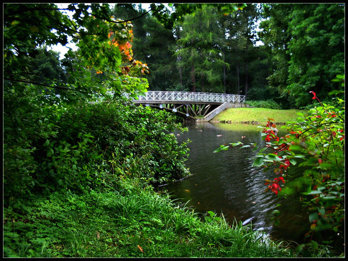 "photo ""Autumn Brush Touch..."" tags: landscape, autumn"