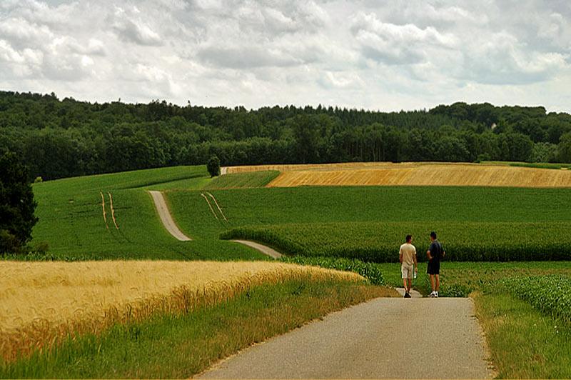 "photo ""A walk"" tags: landscape,"