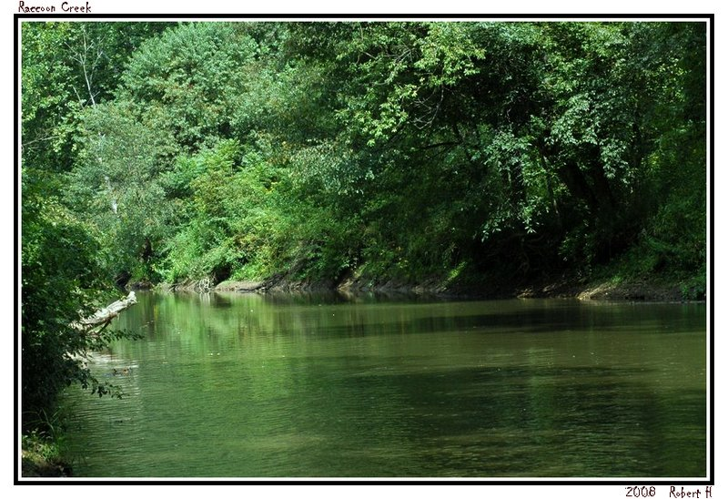 """photo """"Raccoon Creek"""" tags: landscape, forest, water"""