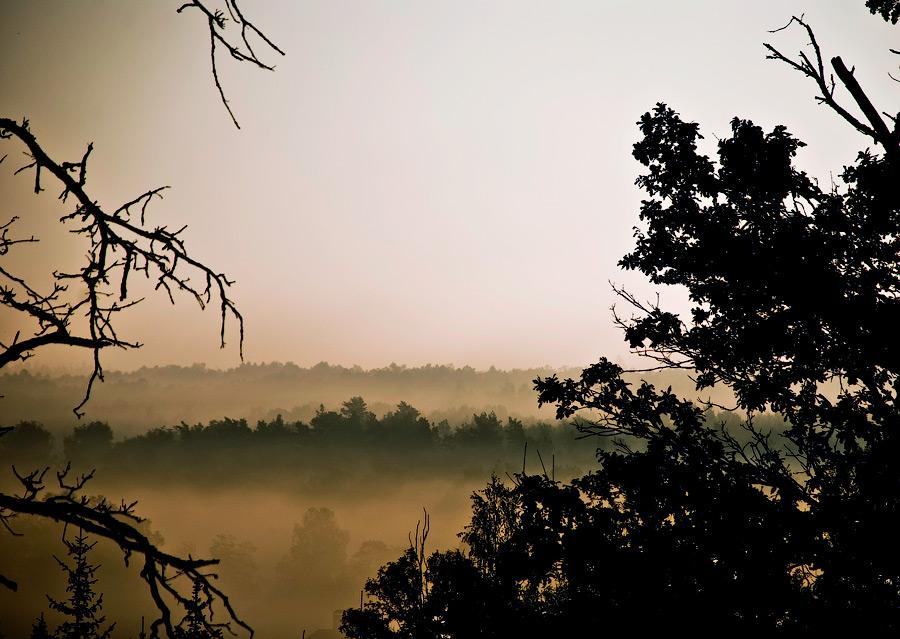 "фото ""Утро в Чеховском районе"" метки: пейзаж,"