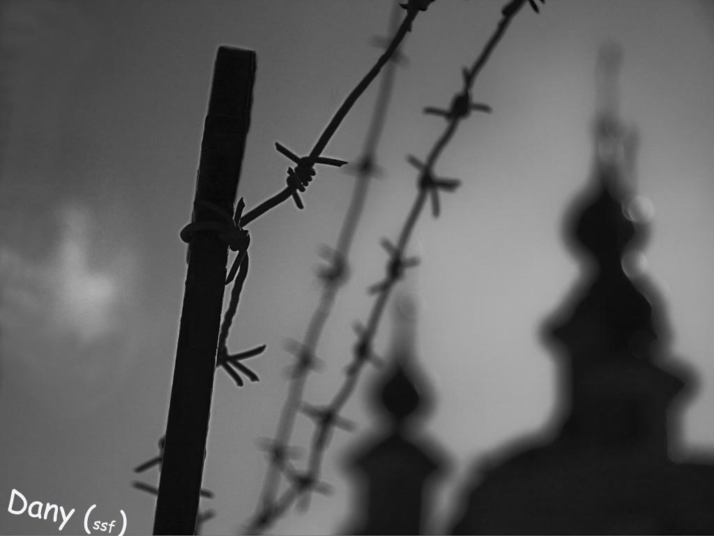 """фото """"Hunted Beauty"""" метки: город, черно-белые,"""