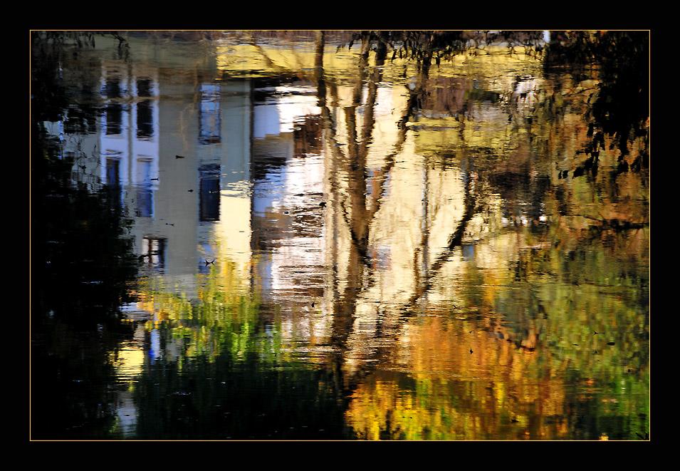 "фото ""Walking Impressions"" метки: пейзаж, абстракция, осень"