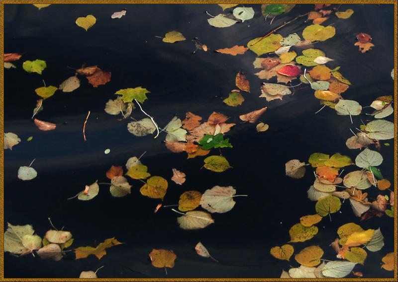 """фото """"уплывает осень..."""" метки: пейзаж, осень"""