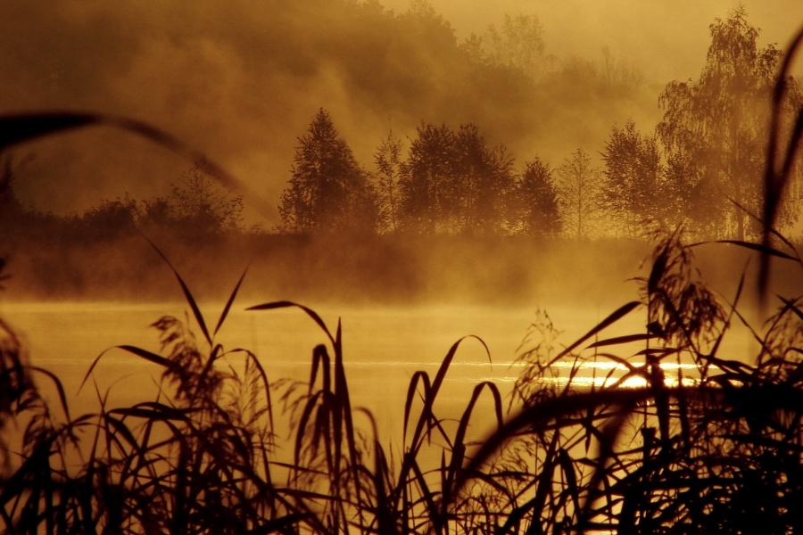 """фото """"Утренний туман ..."""" метки: ,"""