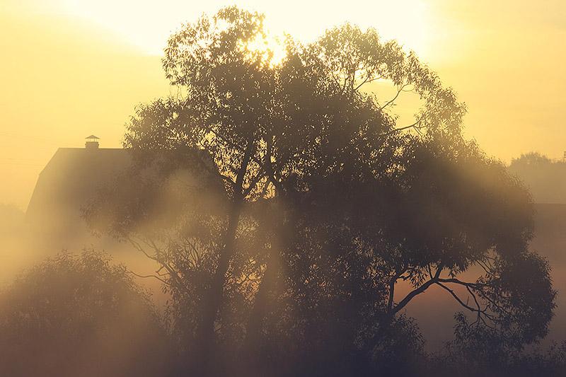 """фото """"утро под крышей неба"""" метки: пейзаж, закат"""