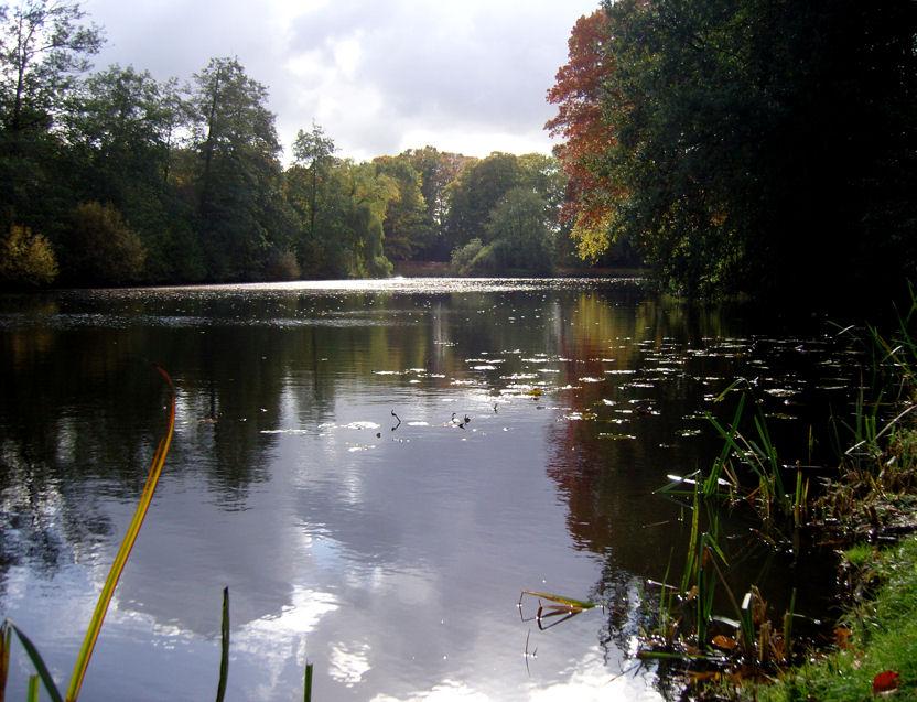 "photo ""beginning Autumn"" tags: landscape, water"