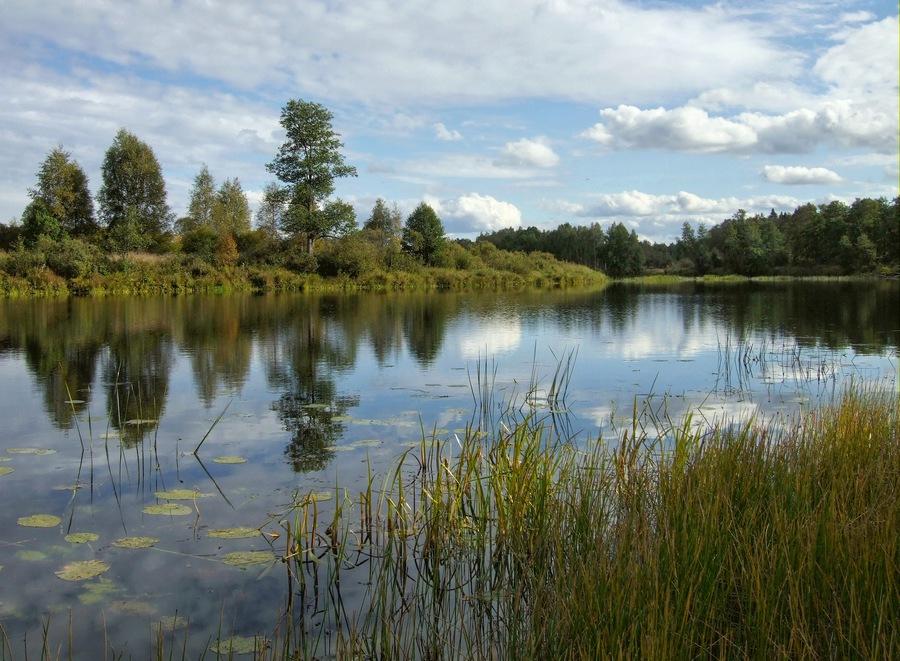 """фото """"Между летом и осенью"""" метки: пейзаж, вода, осень"""