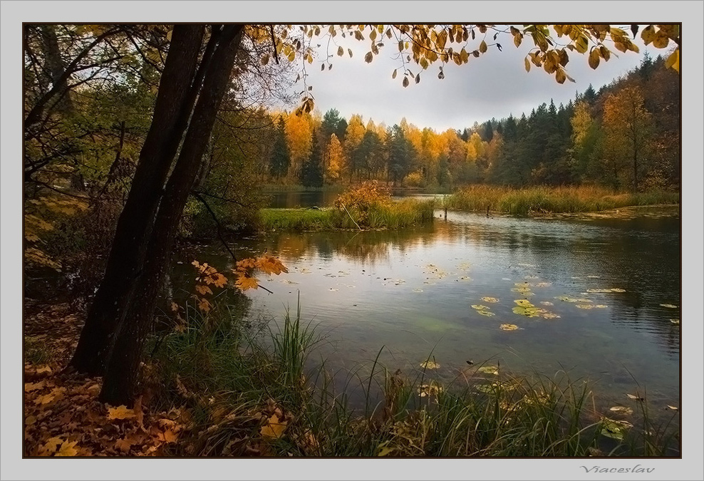 "фото ""У озера."" метки: пейзаж, вода, осень"