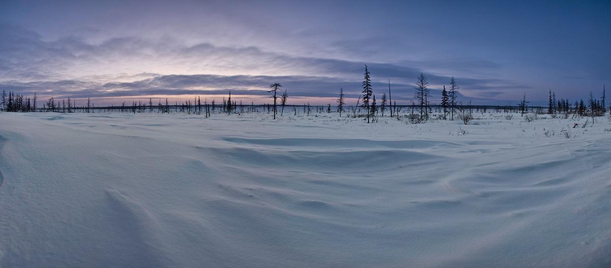 """фото """"Ледниковый период"""" метки: пейзаж, зима"""