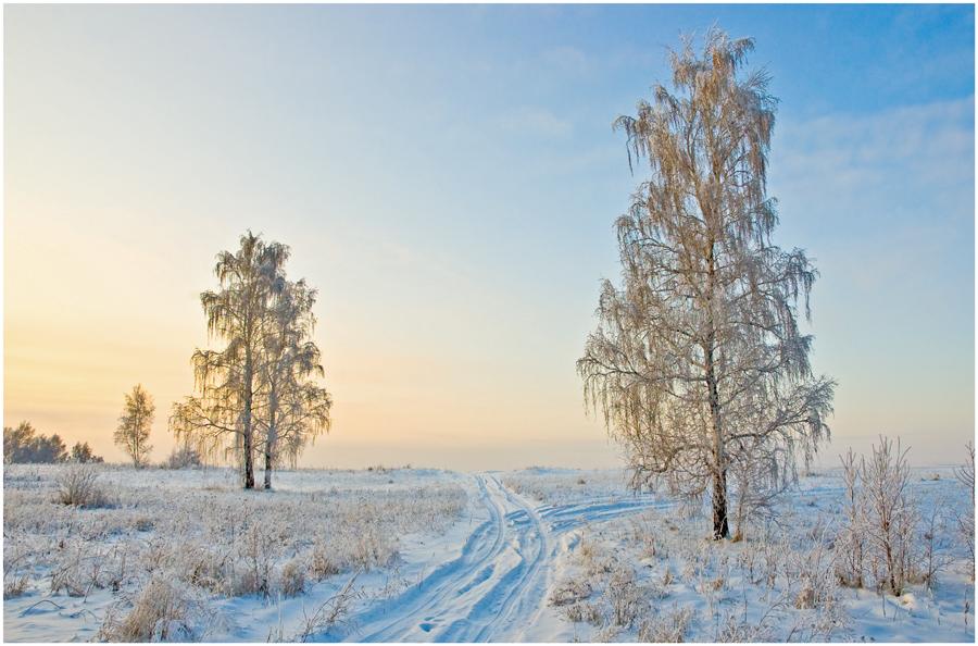 """фото """"Утро в январе"""" метки: пейзаж, зима"""