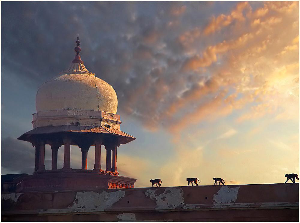 "photo ""Farewell to last of Maharaja"" tags: ,"