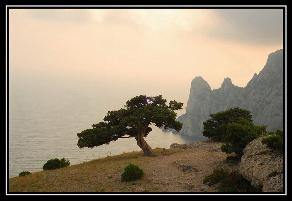 """фото """"Прощаясь с уходящим днем..."""" метки: пейзаж, горы, лес"""