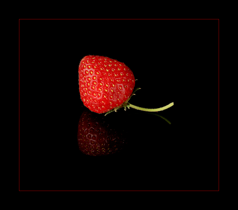 """photo """"strawberry"""" tags: nature, flowers"""