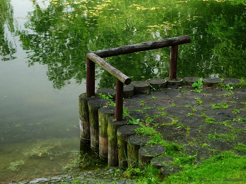 """фото """"Тихий уголок"""" метки: пейзаж, вода"""