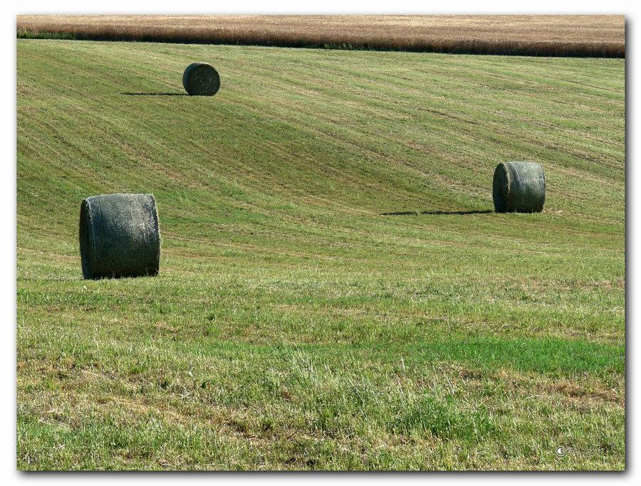 "photo ""Covoni"" tags: landscape,"