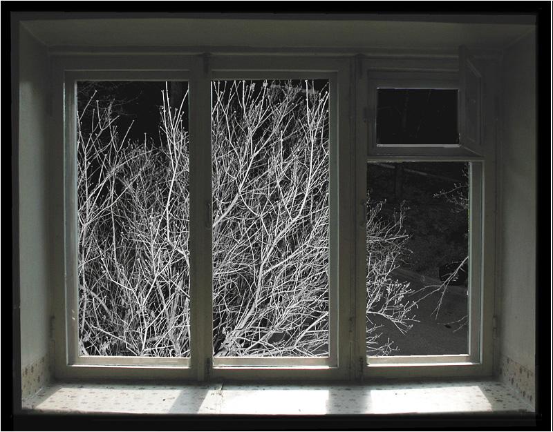 без ваших зимняя ночь за окном фото еще