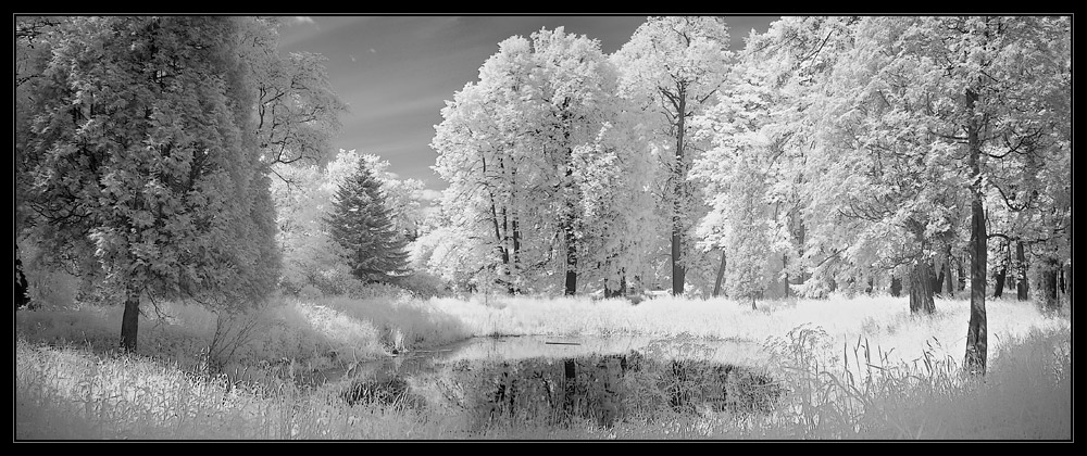 """photo """"In moonlight 2"""" tags: panoramic, landscape, infrared, summer"""